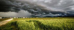 Header-Storm